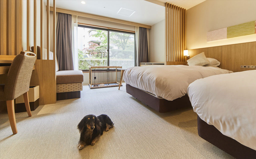 Dog-Friendly Superior Non-Smoking Twin Bed (East Bldg)